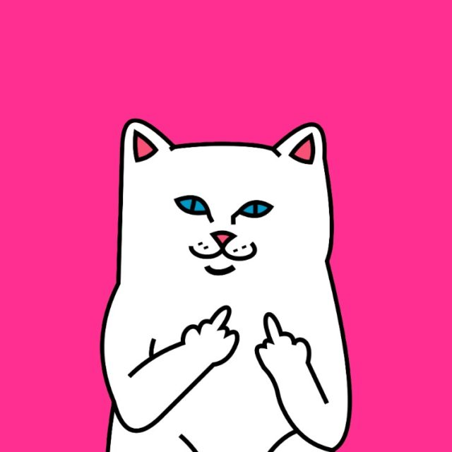 ripndip04 640x640 - 12 RIPNDIP HQ Smartphone Wallpaper Collection