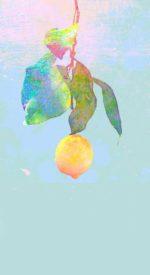 yonezukenshi22 150x275 - 米津玄師のここにしかない✨️高画質スマホ壁紙22枚 [iPhone&Androidに対応]