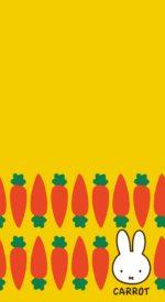 miffy33 150x275 - ミッフィーの無料高画質スマホ壁紙45枚 [iPhone&Androidに対応]