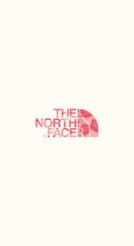 thenorthface25 150x275 - THE NORTH FACE /ザ・ノース・フェイスのおしゃれな無料高画質スマホ壁紙51枚 [iPhone&Androidに対応]