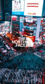 thenorthface51 150x275 - THE NORTH FACE /ザ・ノース・フェイスのおしゃれな無料高画質スマホ壁紙51枚 [iPhone&Androidに対応]