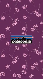 patagonia28 150x275 - patagonia/パタゴニアのおしゃれな無料高画質スマホ壁紙82枚 [iPhone&Androidに対応]