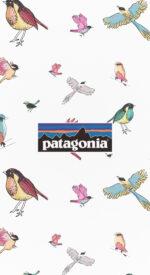 patagonia29 150x275 - patagonia/パタゴニアのおしゃれな無料高画質スマホ壁紙82枚 [iPhone&Androidに対応]